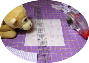 Cutting and stitching lines on the fabric!