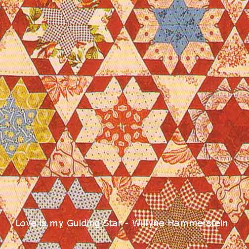 Close-up of Love Be My Guiding Star quilt by Willyne Hammerstein